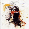 Review of Peter Doherty's album 'Grace/Wastelands'
