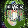 Click for a review of the Vines album 'Highly Evolved'