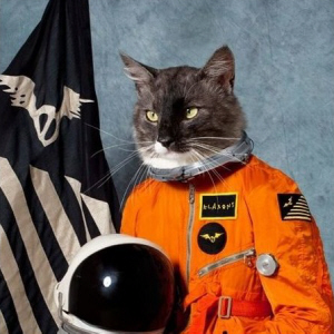 The Klaxons - Surfing the Void